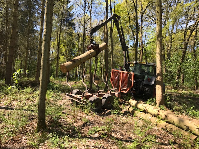 woodland mills chat Woodland mills designs, manufactures and sells high quality, affordable forestry equipment built specifically for do-it-yourself landowners with a vision.